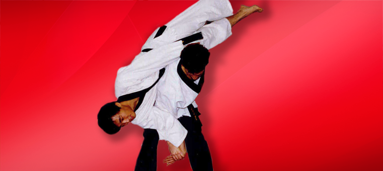 Hapkido_flip
